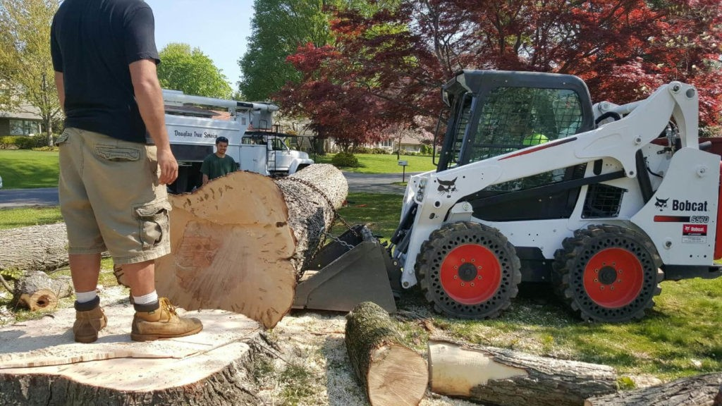 Services-Weston FL Tree Trimming and Stump Grinding Services-We Offer Tree Trimming Services, Tree Removal, Tree Pruning, Tree Cutting, Residential and Commercial Tree Trimming Services, Storm Damage, Emergency Tree Removal, Land Clearing, Tree Companies, Tree Care Service, Stump Grinding, and we're the Best Tree Trimming Company Near You Guaranteed!