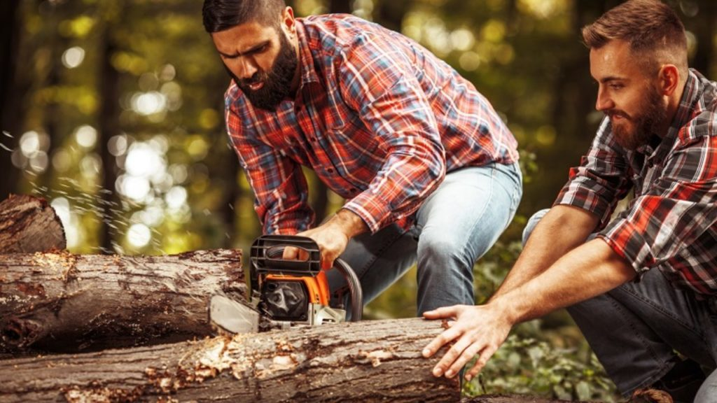 Weston FL Tree Trimming and Stump Grinding Services Home Page Image-We Offer Tree Trimming Services, Tree Removal, Tree Pruning, Tree Cutting, Residential and Commercial Tree Trimming Services, Storm Damage, Emergency Tree Removal, Land Clearing, Tree Companies, Tree Care Service, Stump Grinding, and we're the Best Tree Trimming Company Near You Guaranteed!