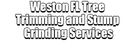 Weston FL Tree Trimming and Stump Grinding Services Logo-We Offer Tree Trimming Services, Tree Removal, Tree Pruning, Tree Cutting, Residential and Commercial Tree Trimming Services, Storm Damage, Emergency Tree Removal, Land Clearing, Tree Companies, Tree Care Service, Stump Grinding, and we're the Best Tree Trimming Company Near You Guaranteed!